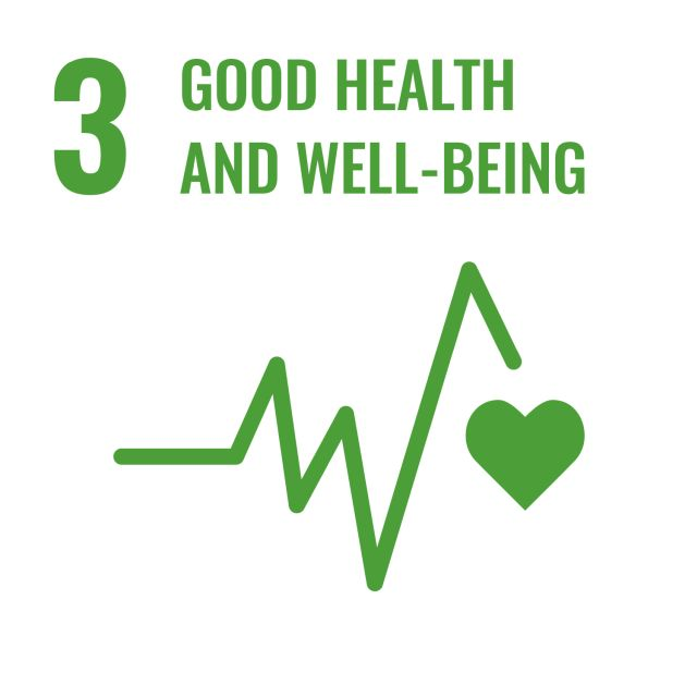 SDG 3 'Good health and well-being'
